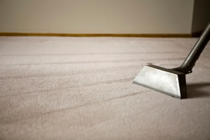 Carpet Cleaners Denver 1
