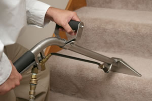 Carpet Cleaners Denver 4
